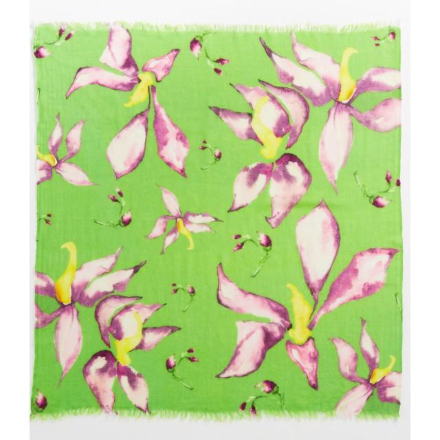 monteverde-foulard